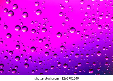 Nice pink and purple gradient color background from water drops of the different size. Abstract water droplets background.