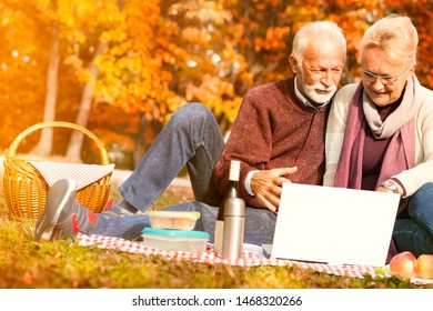 Nice pleasant senior couple making a distance call on their autumn picnic