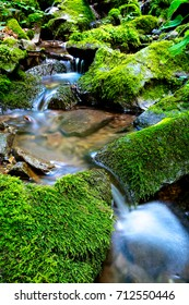nice scene with small waterfall on mountain stream in green stones