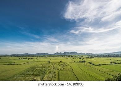 Nice sky and rice farm.