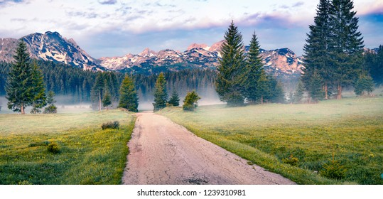 Nice summer sunrise in Durmitor Nacionalni Park. Spectacular foggy view of of Montenegro countryside, Zabljak town location. Beautiful world of Mediterranean countries. Traveling concept background.