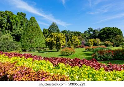 Nice sunny day in city park, take it in SriLanka