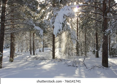 Nice sunny winter day with a lot of snow, forest and mountains near Hemsedal in Norway - Shutterstock ID 766141741