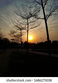 A Nice Sunset in park. Evening Seen.