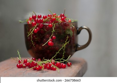 nice and tasty red currants in the brown glass cup