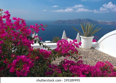 A nice terrace in Santorini island with bougainvillea flowers and the view over the caldera. Greece