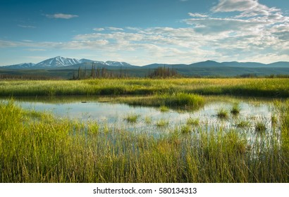 Nice View over marsh lake and wetlands in the Yukon territory, Canada