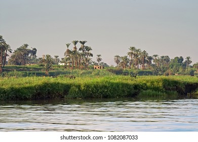 Nice view of river bank Nile in Egypt