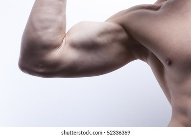 Nice well trained arm