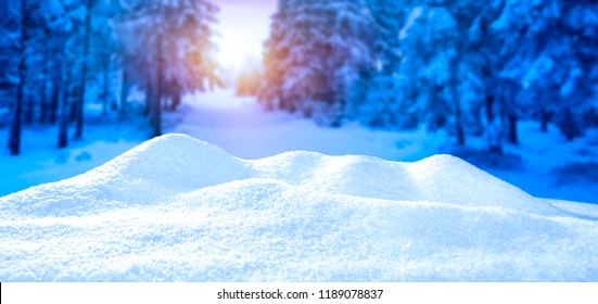 nice white snow against the background of a winter forest with space for an advertising product