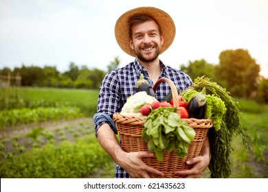 Nice young farmer with freshly picked vegetables in basket