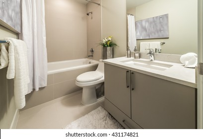 Nicely decorated modern washroom, bathroom, with the toilet sit, sink, some plants on the counter. Interior design.