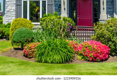 Nicely trimmed bushes in front of the house. Landscape design.