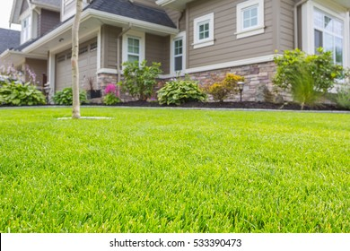 Nicely trimmed front yard with green grass in front of a luxury house.