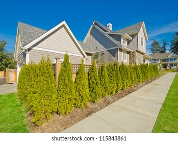 "Nicely trimmed ""Green"" fence hedge from evergreen plants. Keeps privacy and security. Landscape trimming design."