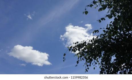 błękit niebo chmura - Shutterstock ID 1159982356