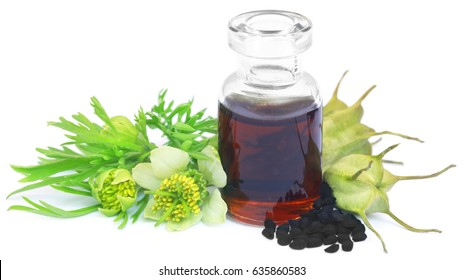 Nigella flower with seeds and essential oil in a glass bottle