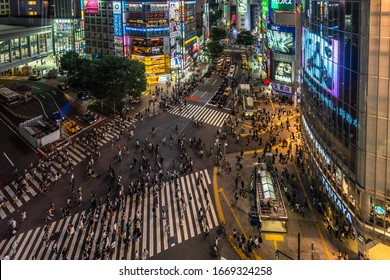 Night aerial view of Shibuya crossing, one of the most crowded crosswalks in the world. Tokyo, Japan, August 2019