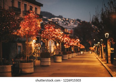 Night alley with Christmas lights on the trees