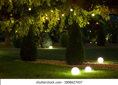 a night backyard with mown lawn and trees festive decorated with garlands with light bulbs in the leaves of trees and ground ball lanterns on celebrate of party holiday park, nobody.