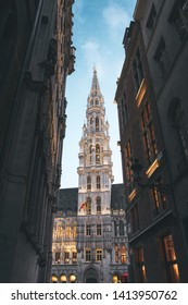 Night city of Brussels. Brussels Town Hall at night illuminated. Grand Place at dusk, Brussels