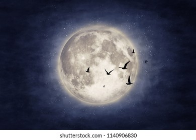 Night cloud sky with moon and stars. Beauty nature background. Elements of this image furnished by NASA