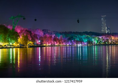 Night decoration of the park in the form of multi-colored lights. Magical forest in Moscow