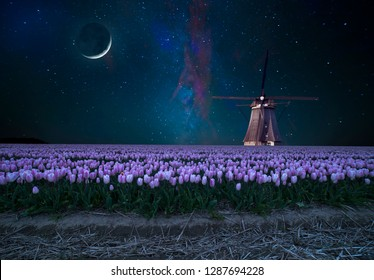 Night field of tulips and windmill. Landscape with stars and flowers. Traditional Holland view