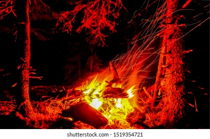 Night forest campfire burning view. Night campfire burning. Night campfire logs burning. Night forest campfire burning logs close up