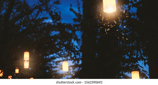 Night forest illumination. Beautiful glowing lights in woods at nighttime, paper lanterns festival in park at dusk. Decorative botanical backdrop with tree silhouettes and shiny garland