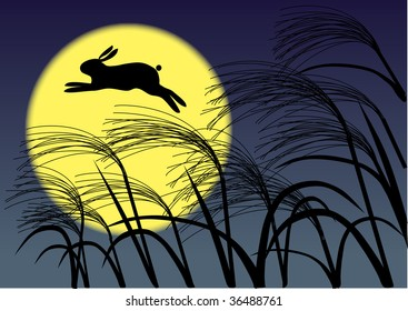 A night with a full moon&rabbit Illustration