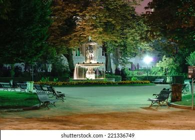 Night garden in Paris
