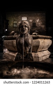 Night image of the fountain detail of Piazza Vecchia, the Sphinx of the Contarini fountain in the center of the square in Bergamo Alta, historic city of Lombardy