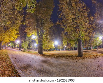 Night image in a park in autumn