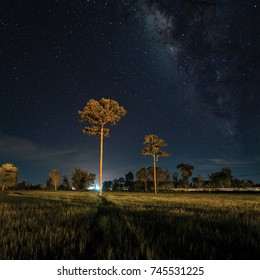 Night landscape with colorful MilkyWay File Art