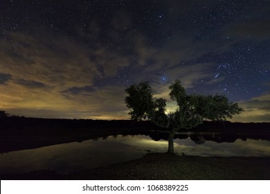 Night landscape near Santibañez el Bajo. Extremadura. Spain