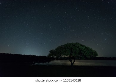 Night landscape near Montehermoso. Extremadura. Spain