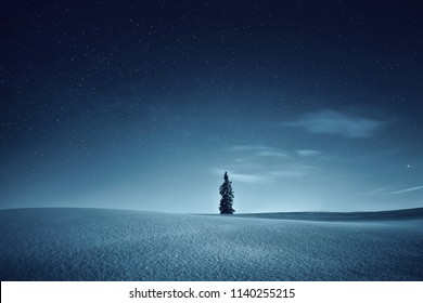 Night landscape. Night winter. Sky with stars over snowy meadow. Stunning night background.