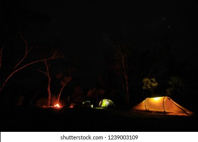Night lights from the tents in wilderness