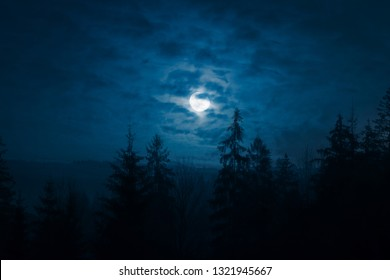 Night mysterious landscape in cold tones - silhouettes of the spruce forest under the full moon trough the clouds on a night sky.
