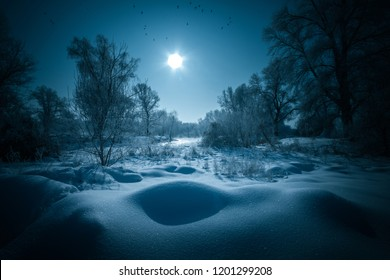 Night mystical scenery. Full moon over snowy forest.