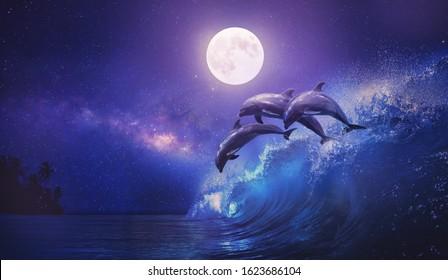 Night ocean with three playful dolphins leaping from sea on surfing wave and full moon shining on tropical background