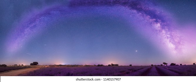 Night panoramic astrophotography: Milky Way over lavender fields in Brihuega, Guadalajara, Spain