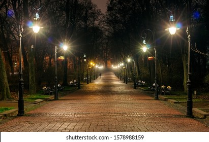 Night park and alley with lanterns