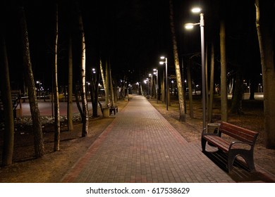 A Night in the Park. Late Autumn Night in the Park. Wood Benches and Park Alley. Horizontal Photography.
