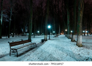 Night park in winter with trees, lanterns and fallen snow. New Year's decorations. Landscape.