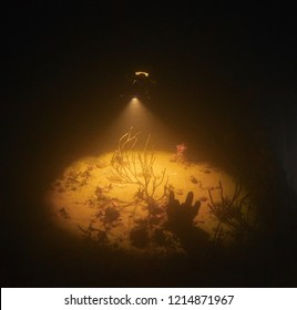 Night photo of a lone scuba diver with searchlight over coral on shipwreck