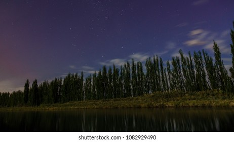 Night photography where there is a river. The poplar line is reflected on the water. There are some stars and clouds in the sky. Blue hour. Patagonia, Argentina
