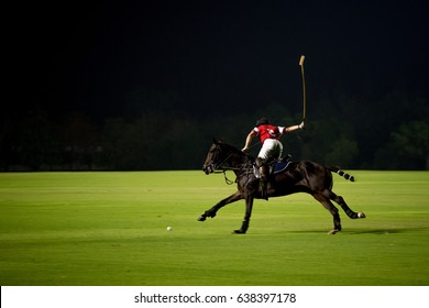 At Night Polo player and horse playing in games.