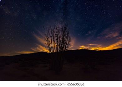 A night shot in the Anza Borrego Desert